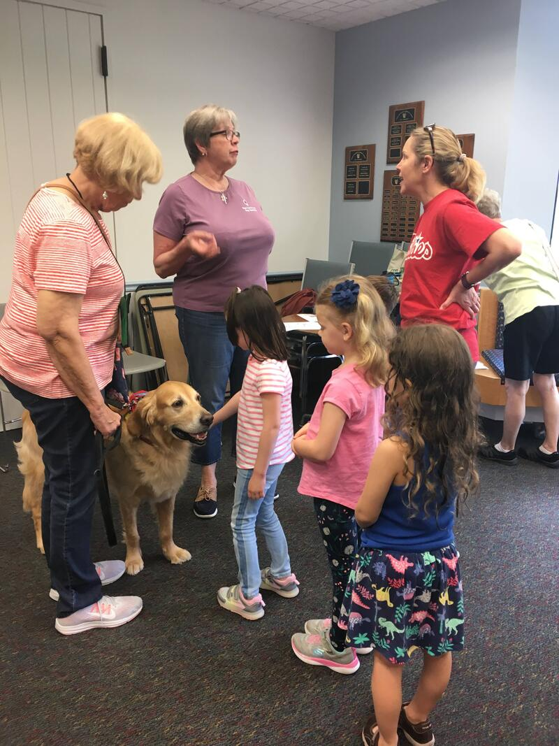 Therapy Dog & Canine Good Citizen - Dog Gone Good Dog Training